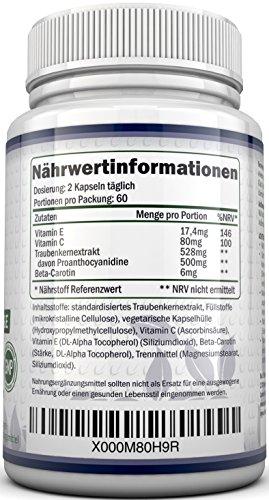 OPC Traubenkernextrakt – 120 OPC-Kapseln (2 Monatsvorrat) – OPC hochdosierte 500mg pro Portion OPC-Kapseln mit zusätzlichem Vitamin C & E – Für Vegetarier & Veganer geeignet - 3